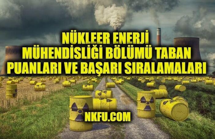 Nükleer Enerji Mühendisliği