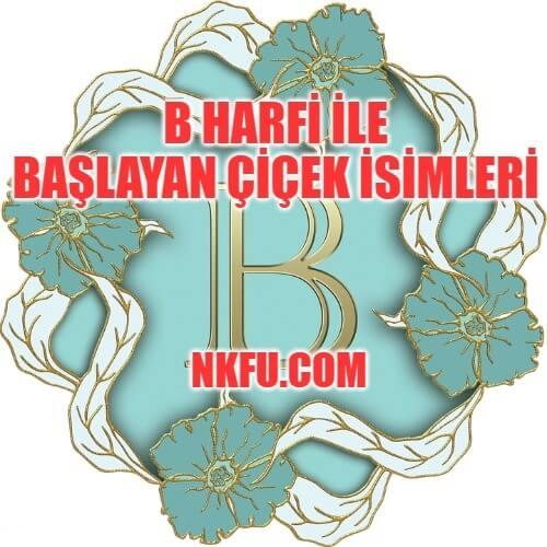 B Harfiyle çiçek