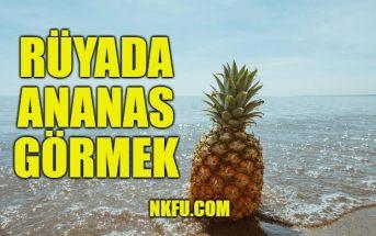 Rüyada Ananas Görmek