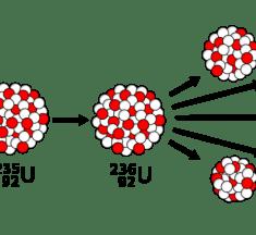 Fisyon Tepkimesi Nedir? Fisyon Olayının Örnekler İle Anlatımı