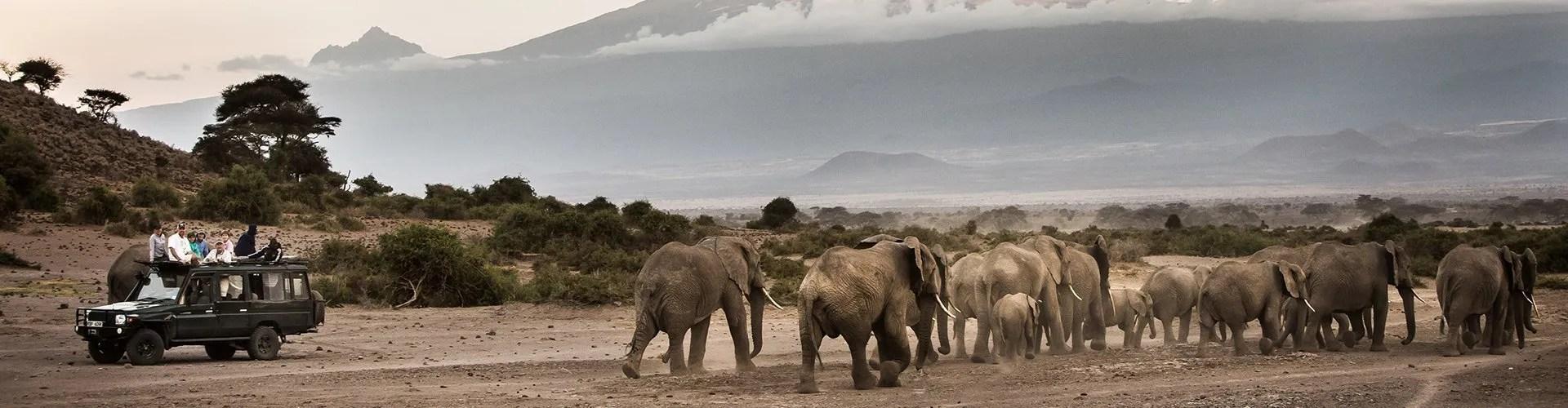 Uganda Holiday Safaris