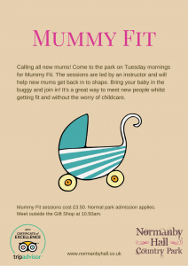 Mummy Fit @ Normanby Hall | Normanby | England | United Kingdom