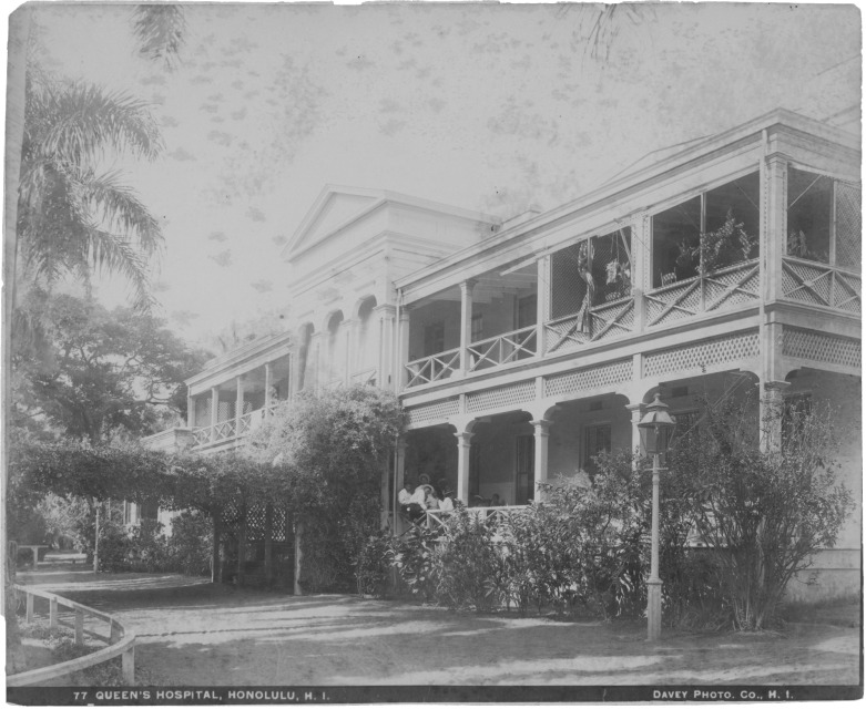 Queens Hospital established to protect Hawaiian race