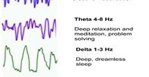 theta delta brain waves