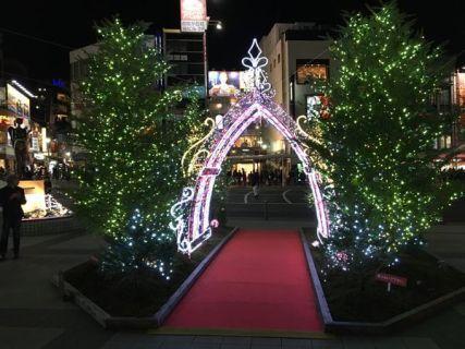 今からでもクリスマスに誘いましょう