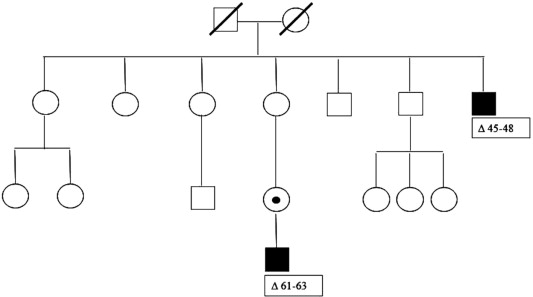 The medical genetics of dystrophinopathies: Molecular