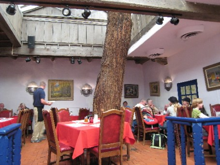 An ancient cottonwood from the days in which this dining room was the center courtyard.