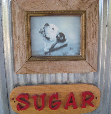 Sugar, the darling, drooling bulldog for whom the restaurant is named
