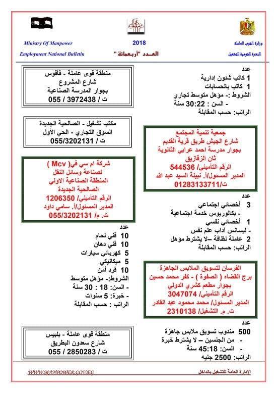 بعد وظائف الكهرباء وبنك ناصر| القوى العاملة تعلن رسمياً عن فرص عمل براتب يصل لـ 5000 جنيه ولجميع المؤهلات والتخصصات
