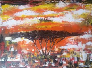 Lonely Acacia Tree