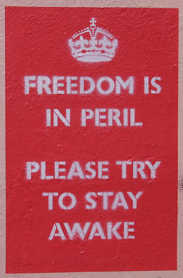 Freedom is in peril stencil