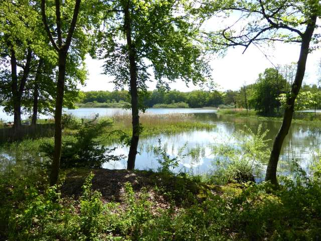 Ruisseau1