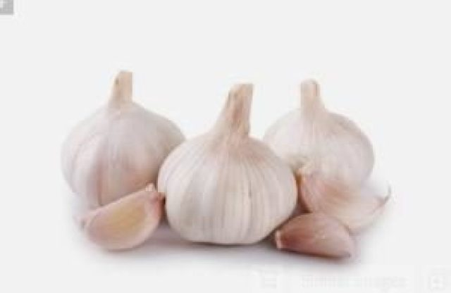 Garlic Benefit for human