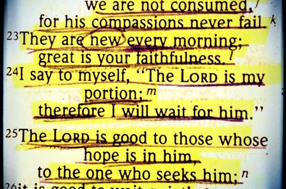 new-mercies-thousands-of-mercies-grace