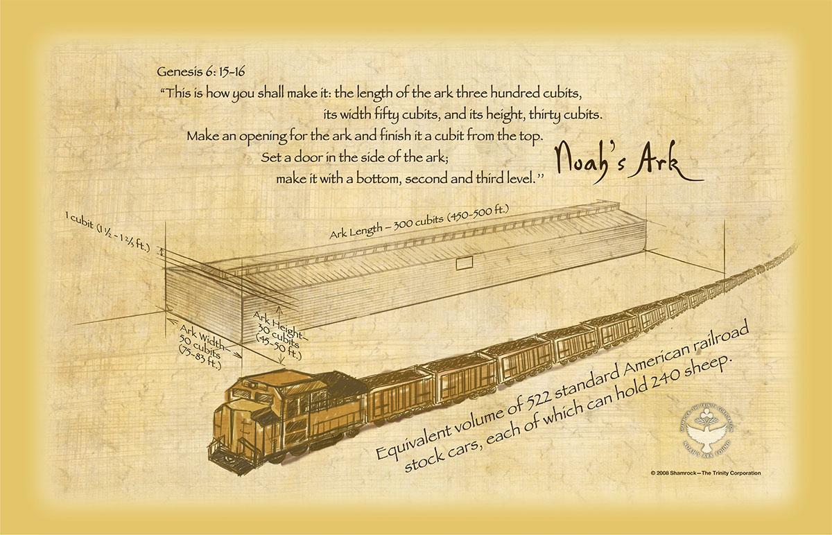 hight resolution of noah s ark size