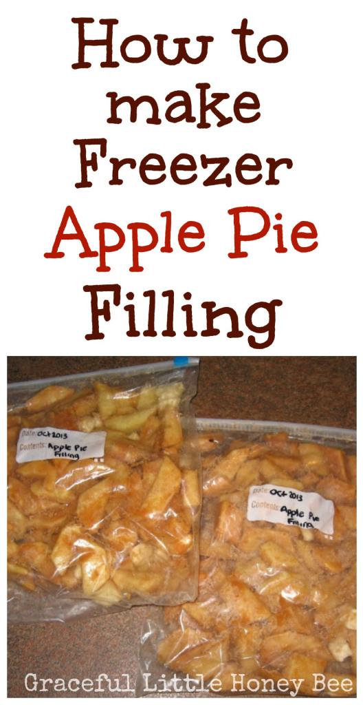 25+ Apple Recipes | NoBiggie