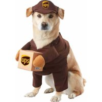 25+ Creative Costumes for Dogs - NoBiggie