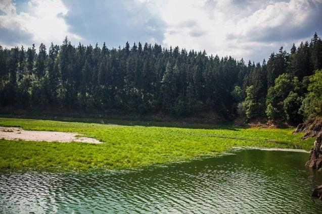 jezioro_zapora_pilchowice_11