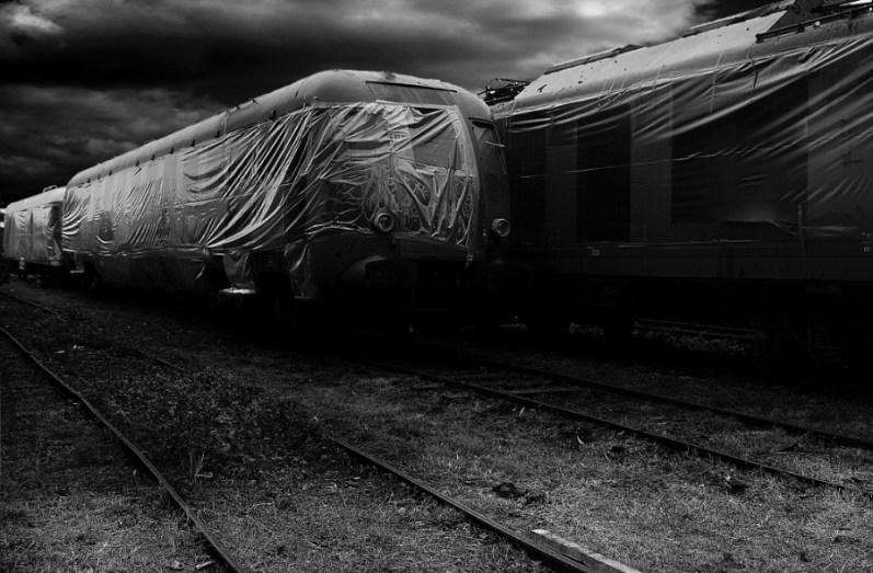 Il Treno della Vita 8