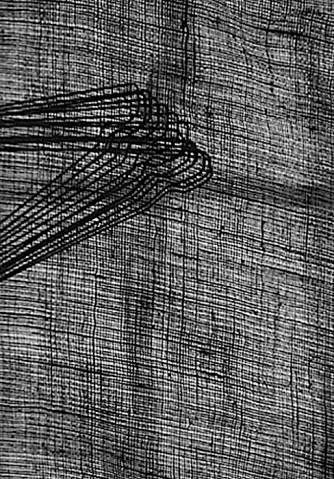 La tela – Una tela finemente reticolata è la lavagna su cui sono presenti, in alto a sinistra, alcune presenze, (forse grucce per abiti). L'insieme è di decisa armonia grafica e compositiva. Bravo, bravissimo a Domenico Giannantonio, che è stato pronto a intuire questa opportunità ed a farne qualcosa da boutique raffinata.