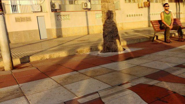 © Cristóbal Carretero Cassinello. Arrakis