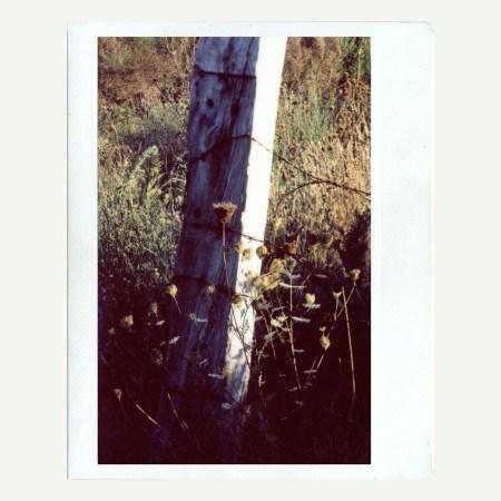 https://www.instagram.com/p/B5IOA-7CNVX/
