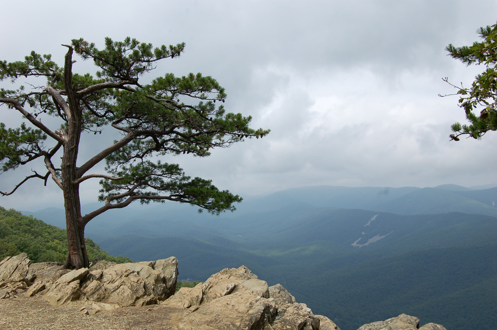 blueridge_overlook