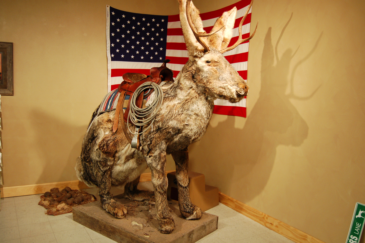 You can pose atop the Jackalope for a small fee