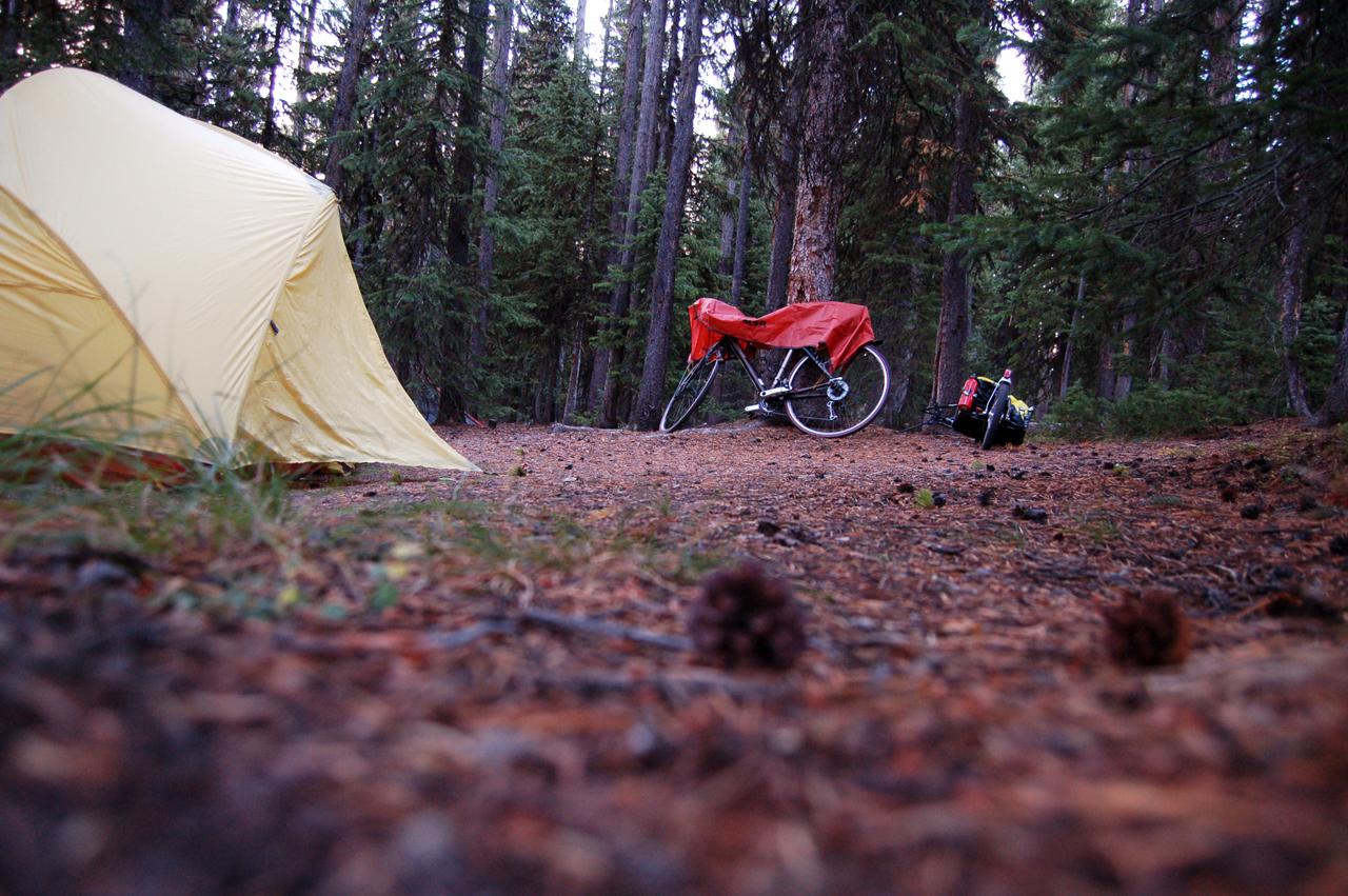Campsite, Grant Village, Yellowstone