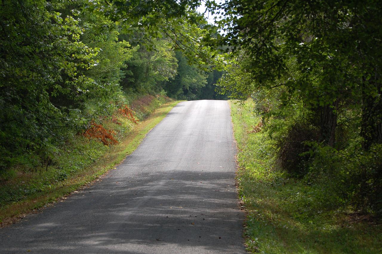 The hill where I lost control