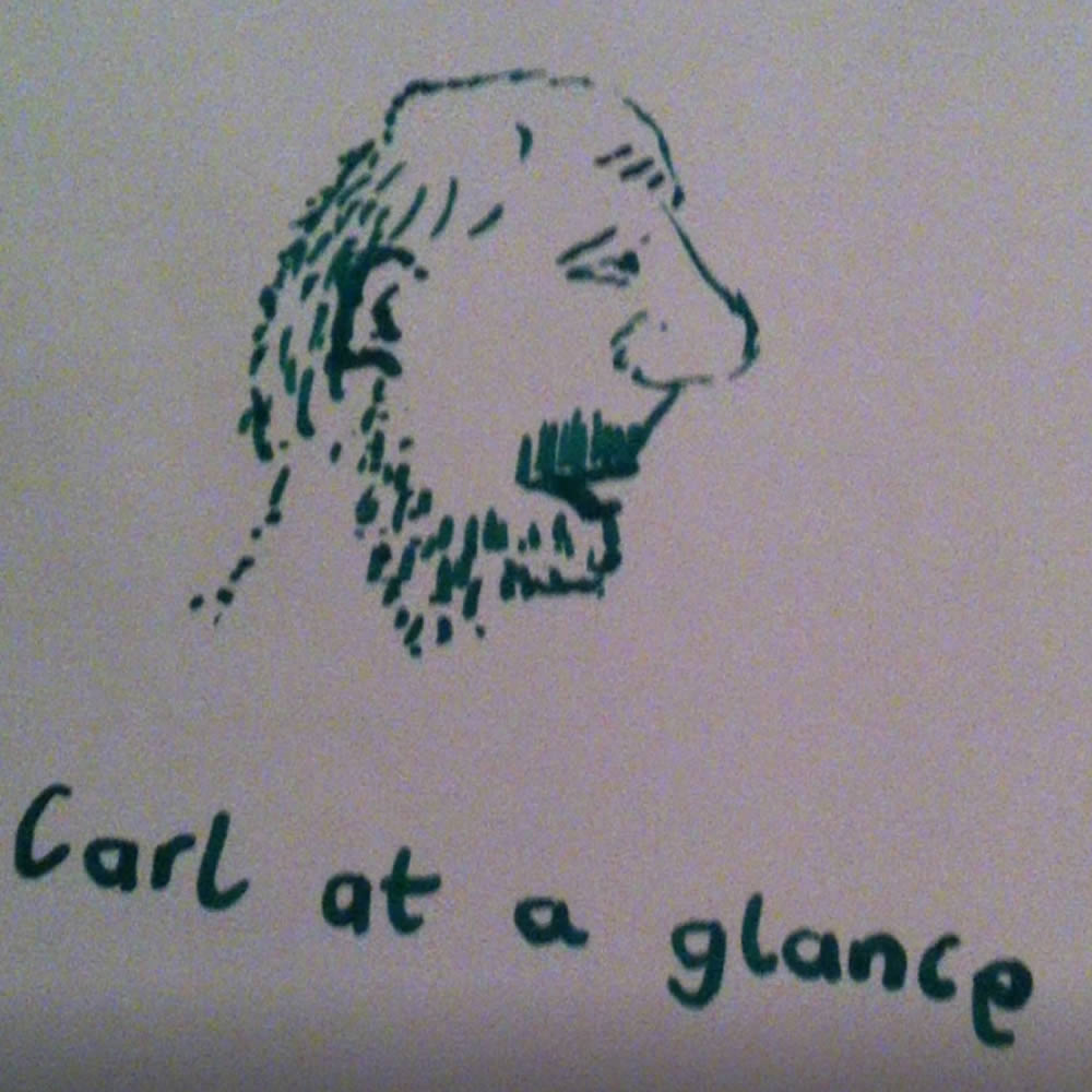 Carl Stipetic - Carl At A Glance