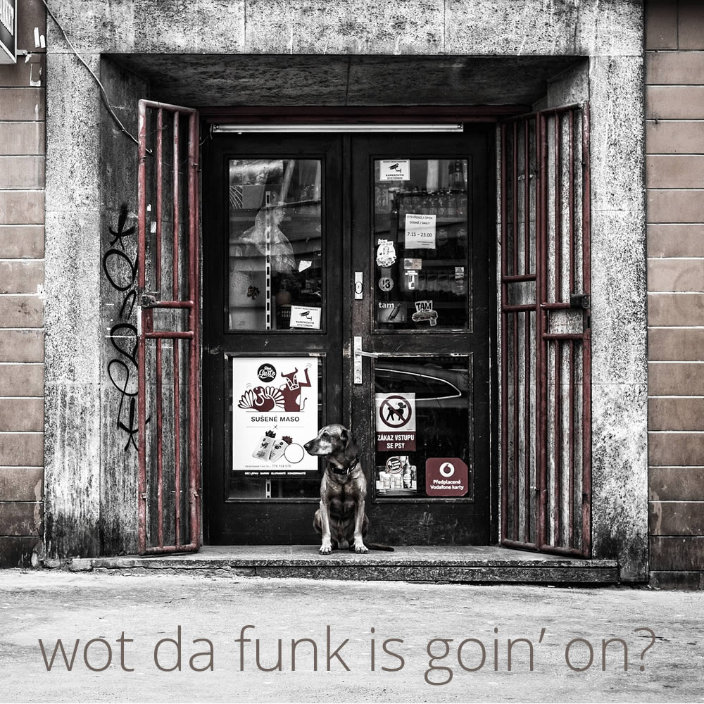 Wot Da Funk Is Goin' On? | Noego Music