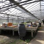 serre horticole, légumière