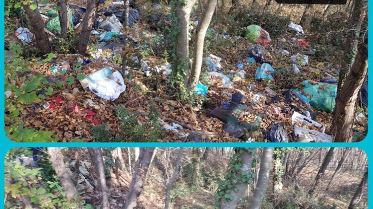 PlasticFree, accordo col Comune per pulire la città. «Segnalateci i luoghi»