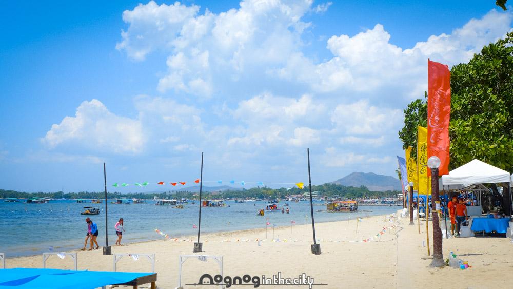 Caribbean Beach Resort Google Map Matabungkay Beach