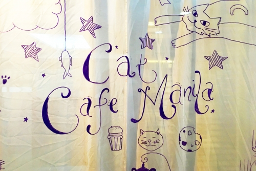 Fur-tastic day at Cat Cafe Manila – Maginhawa, Quezon City
