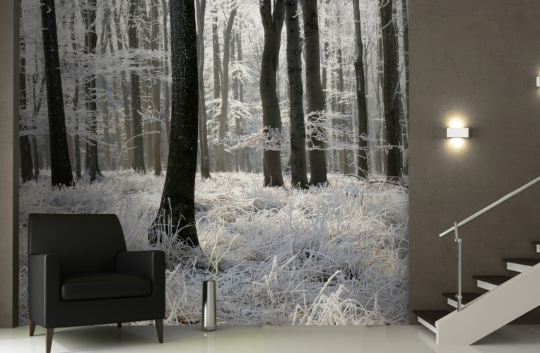 winter-frost-forest-wallpaper-murals-room