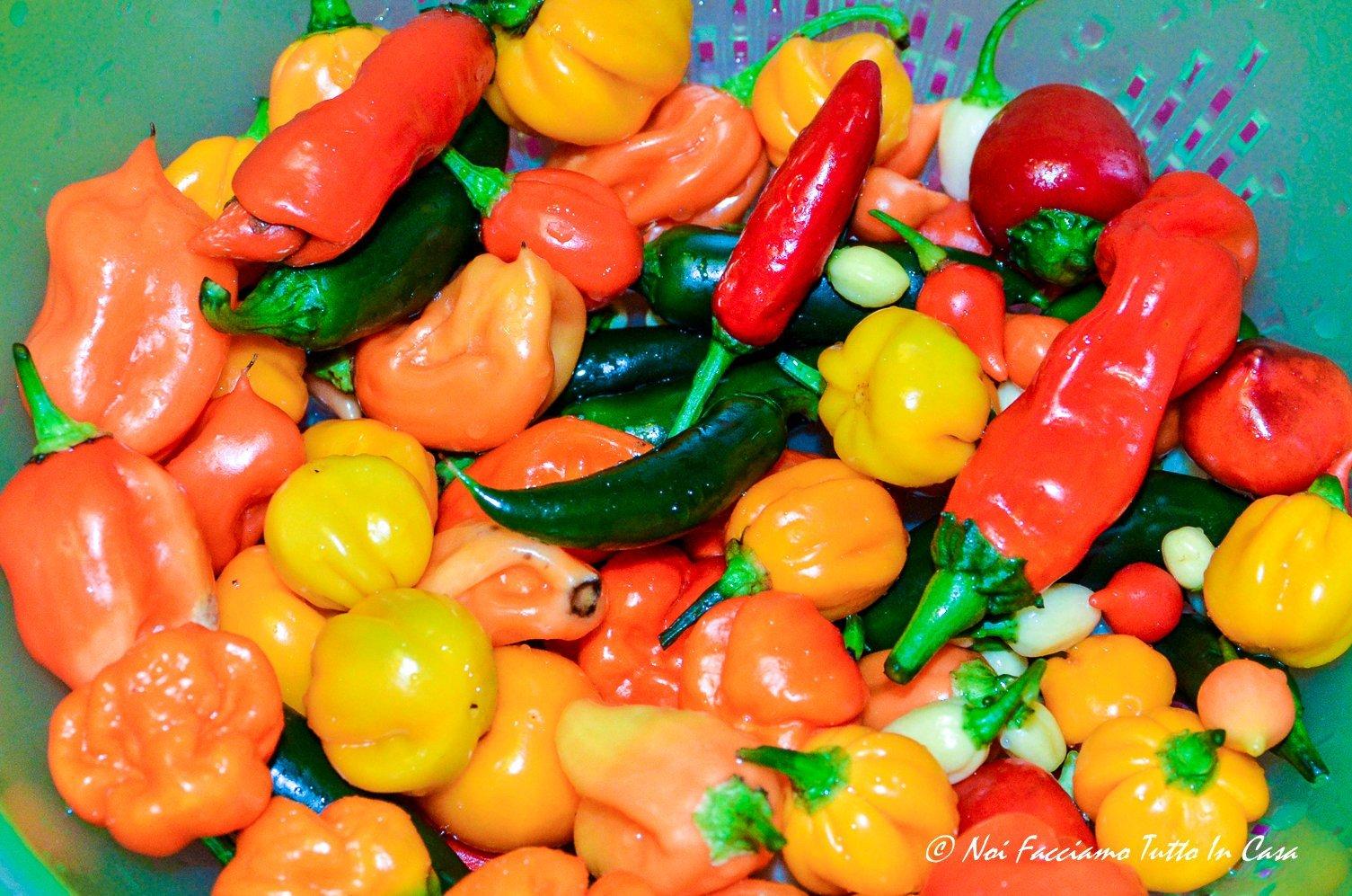 Composta di peperoni e peperoncini piccanti