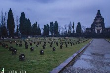 The common graves