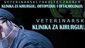 VEF Klinika za kirurgiju