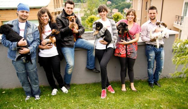 Psi iz Noine Arke kumčad HTZ-ovaca 2011.