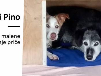 Una i Pino i malene pasje priče