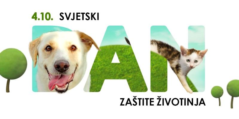 4.10. Svjetski dan zaštite životinja