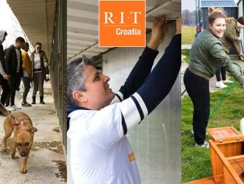 Studenti RIT Croatia volontirali u Noinoj Arci