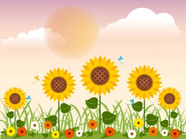 estate-girasoli-campagna-Anan-Punyod-_-Dreamstime