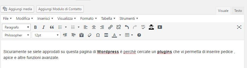 Plugins Editor Avanzato Wordpress TinyMCE caratteri apice pedice