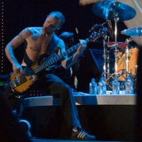Flea of Red Hot Chili Peppers. image by Ros O'Gorman.