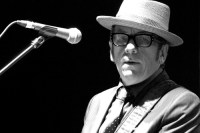 Elvis Costello. Photo by Ros O'Gorman
