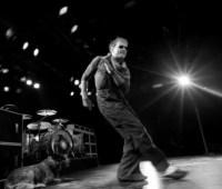 David Lee Roth with Van Halen image