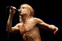 Iggy & The Stooges, Bluesfest 2013, Noise11, Ian Laidlaw, Photo